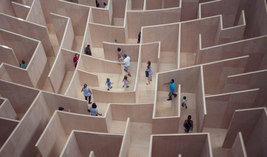 people walking in a maze